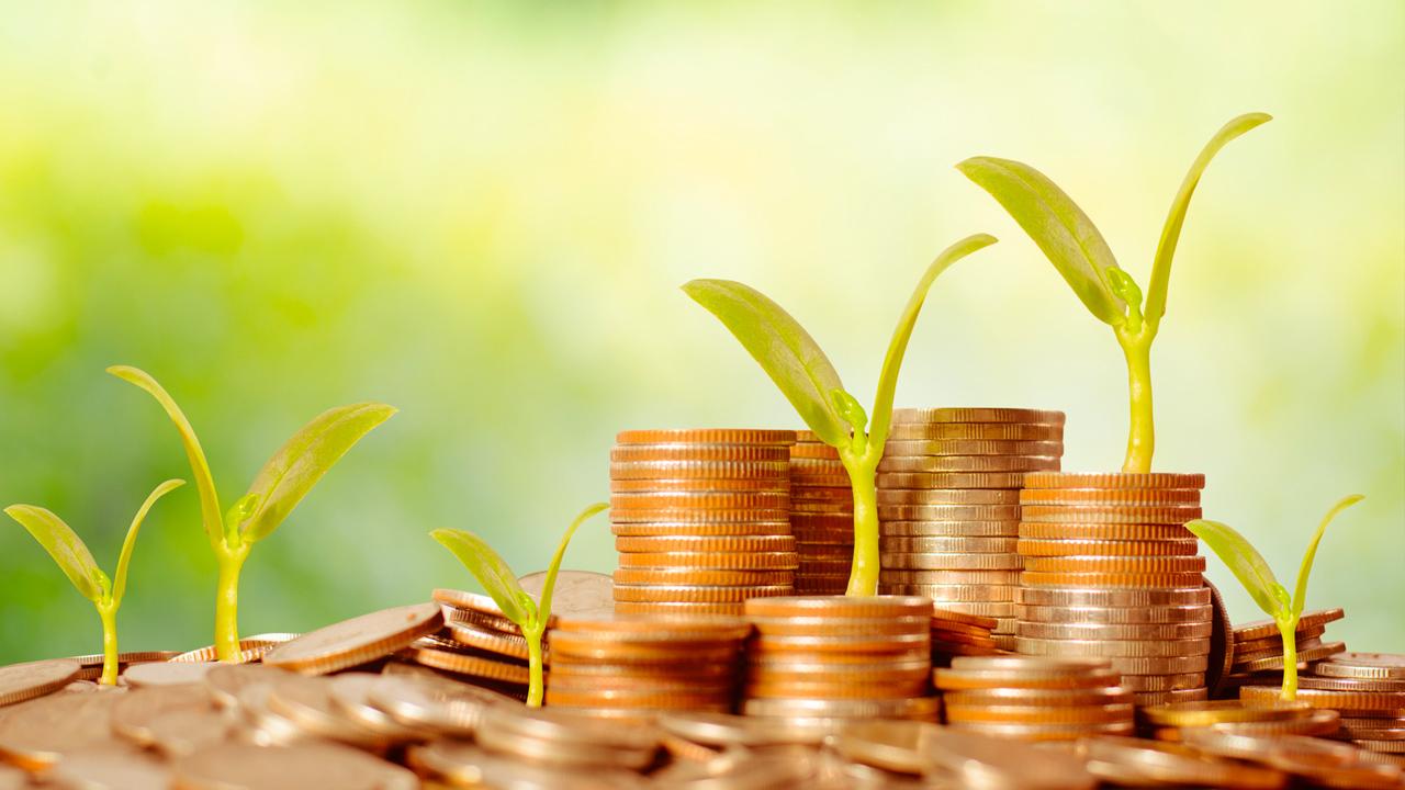 Geld-groeien-economie-greenport-duin-en-bollenstreek