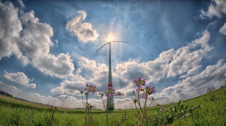 Duurzaamheid-klimaatneutraal-greenport-duin-en-bollenstreek