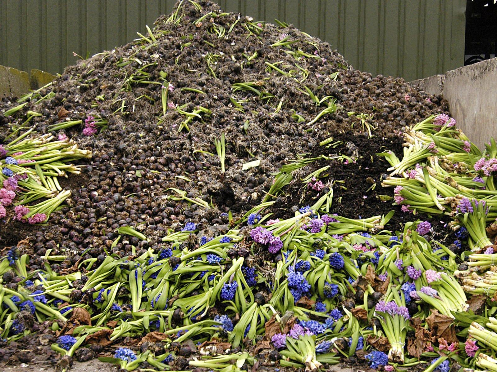 Reststromen-compost-greenportdb