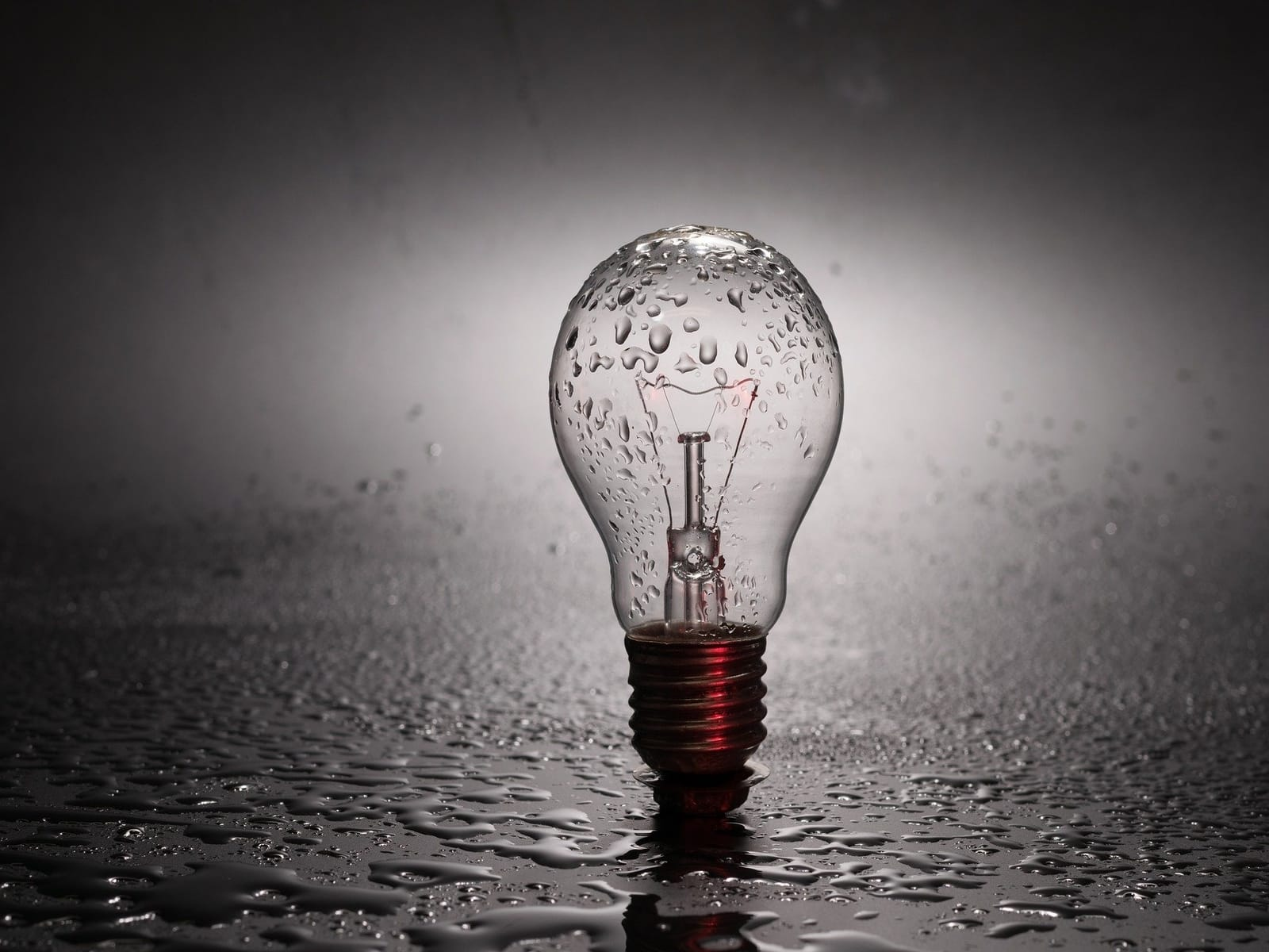Lampen-uit-greenport-duin-en-bollenstreek