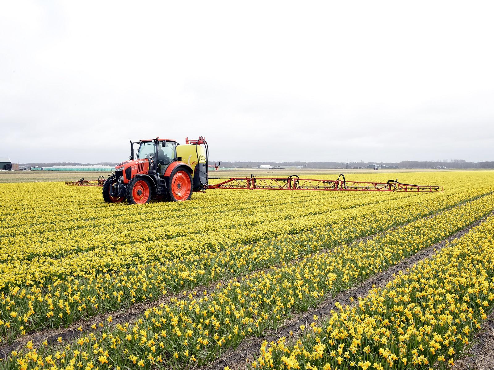 Gewasbeschermingsmiddelen-Narcis-greenport-duin-en-bollenstreek