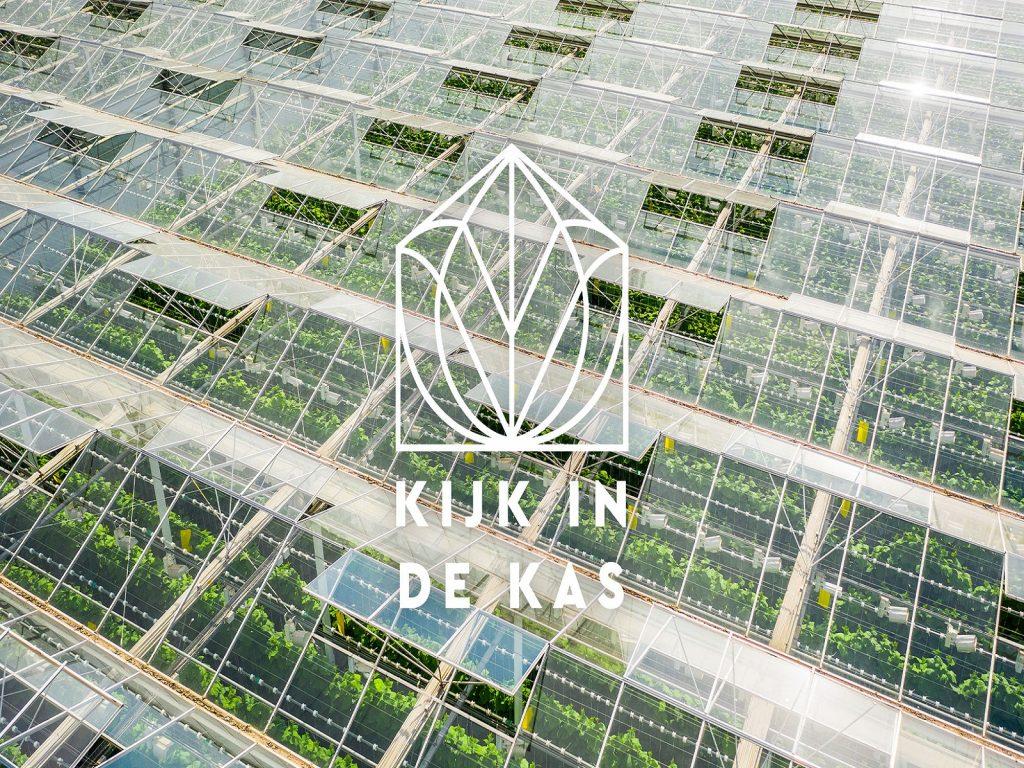 Kim-in-de-kas-greenport-duin-en-bollenstreek
