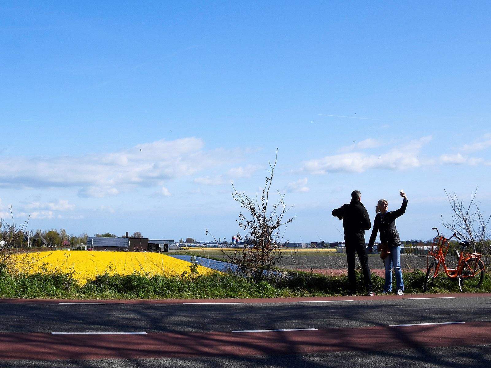 Bollenvelden-bloemenfeesten-greenport-duin-en-bollenstreek