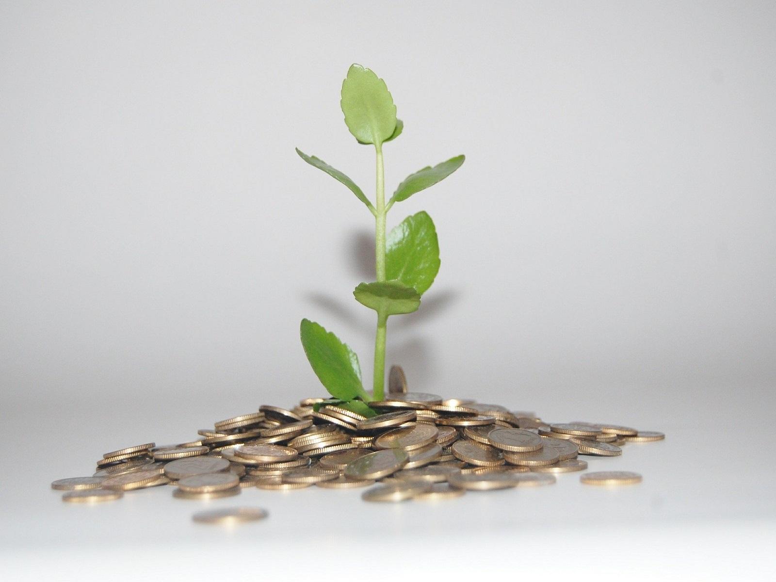subsidie-projecten-topsector-greenport-duin-en-bollenstreek