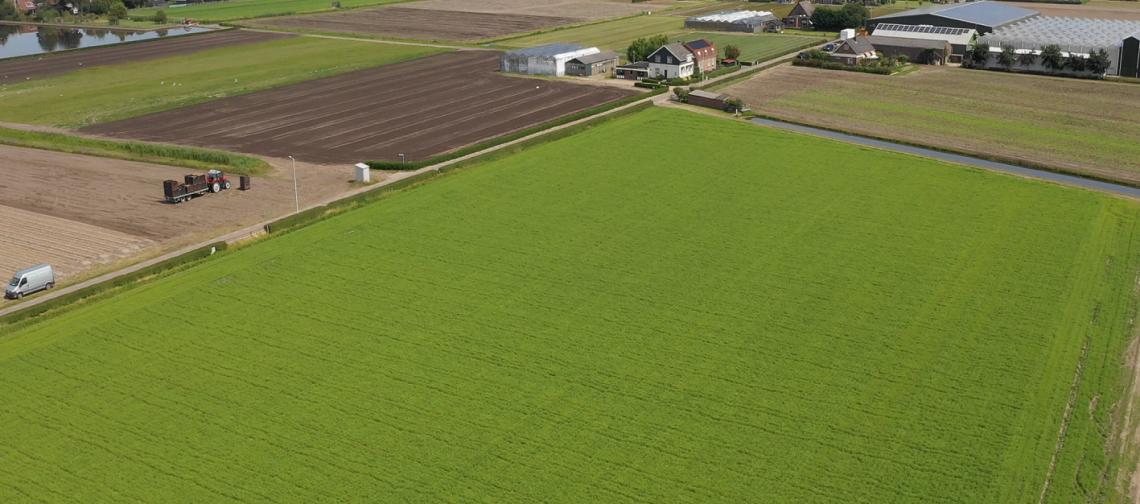 overview-land-Bollenjongens-greenport-duin-en-bollenstreek