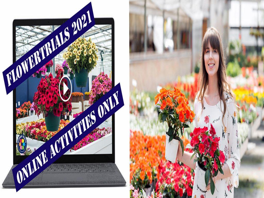 flowertrials-geannuleerd-2021-greenport-duin-en-bollenstreek