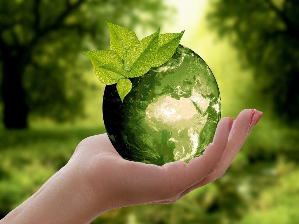 duurzaam-ondernemen-greenport-duin-en-bollenstreek