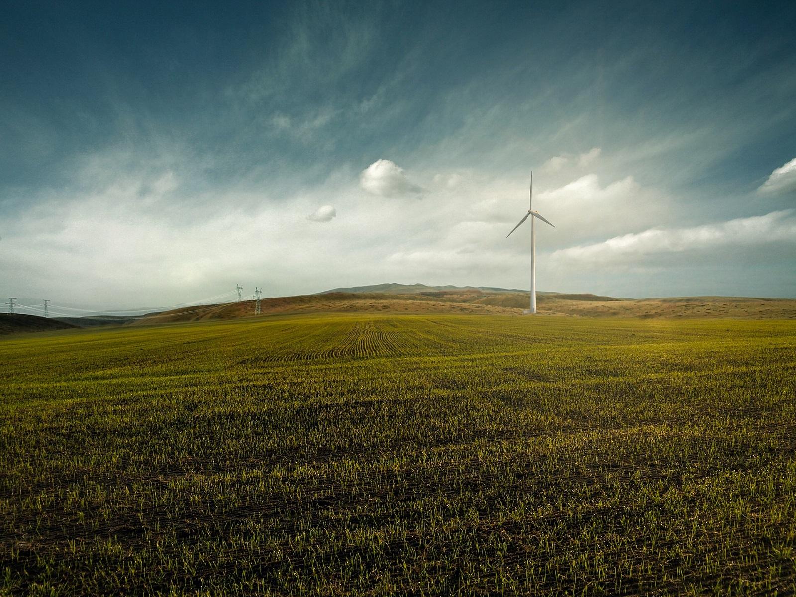 cos-uitstoot-verlagen-subsidie-greenport-duin-en-bollenstreek