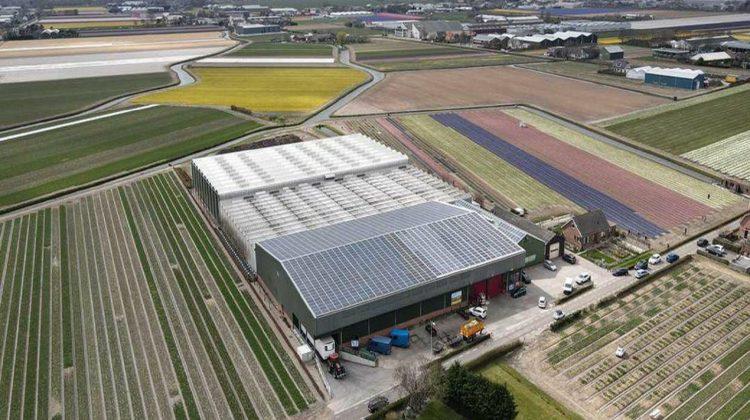 Van-der-Slot-in-het-zonnetje-greenport-duin-en-bollenstreek
