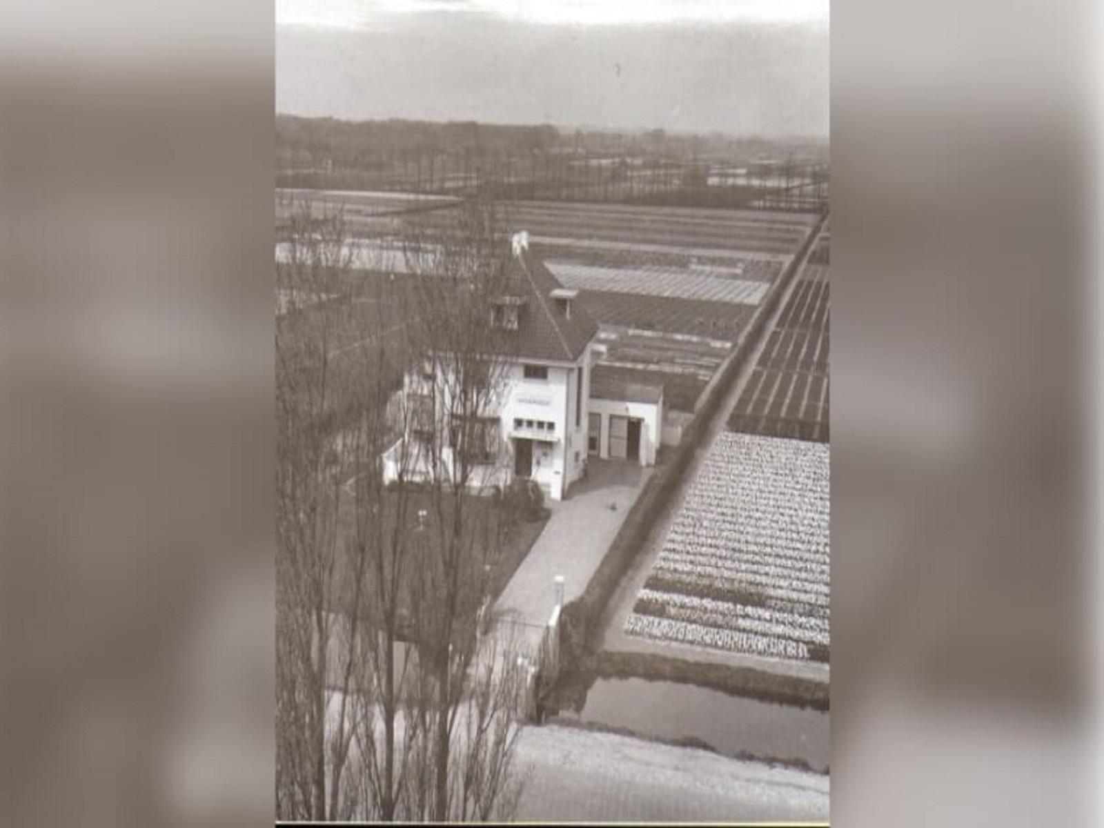 subsidie-aanplanten-hagen-duin-en-bollenstreek-greenport