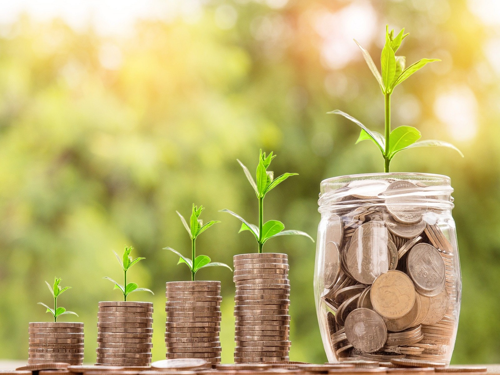 Investeringsfonds-Duurzame-Landbouw- (IDL)-greenport