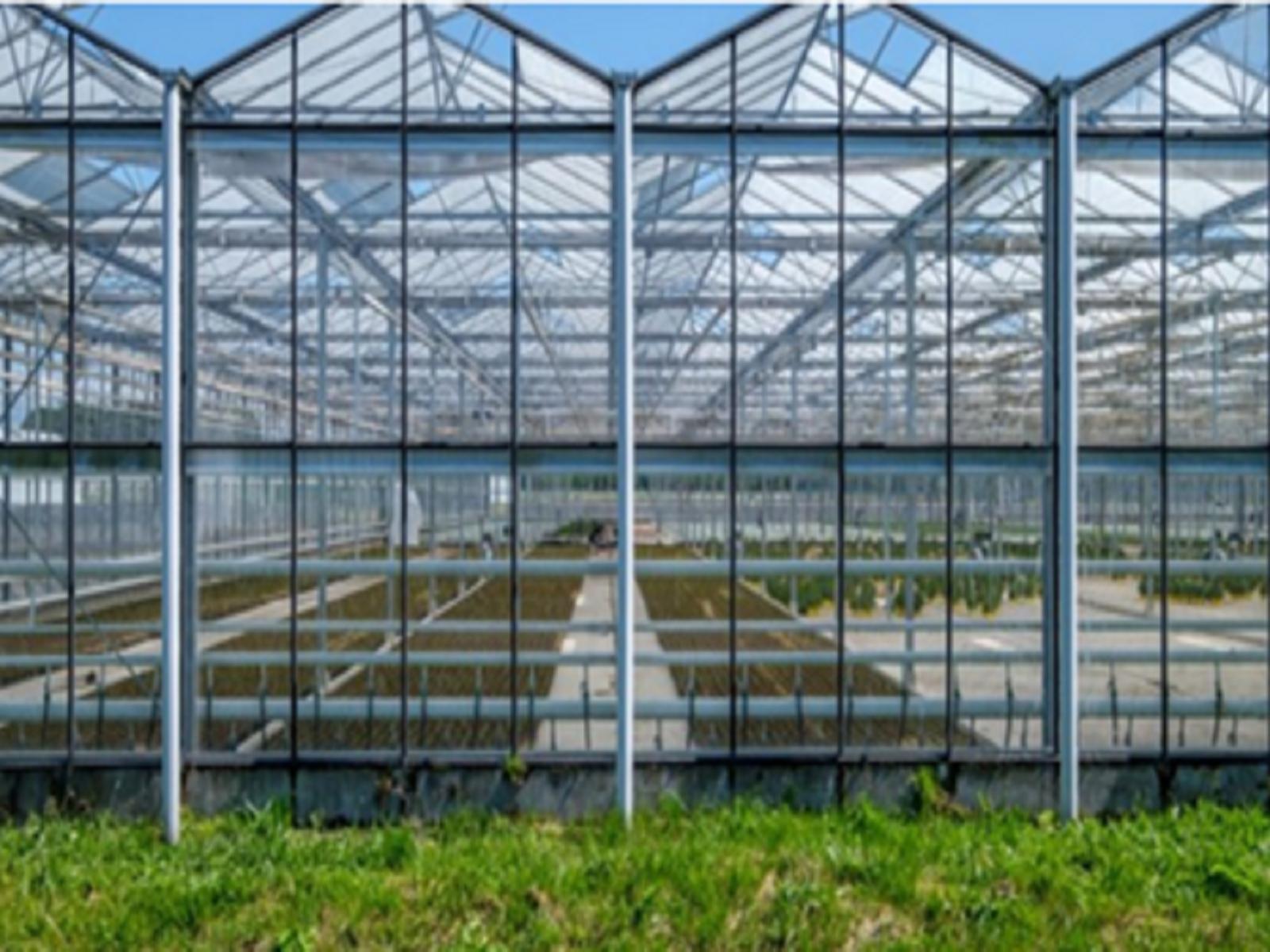 Online innovatiecafé 'circulariteit in de tuinbouw' Greenport Aalsmeer