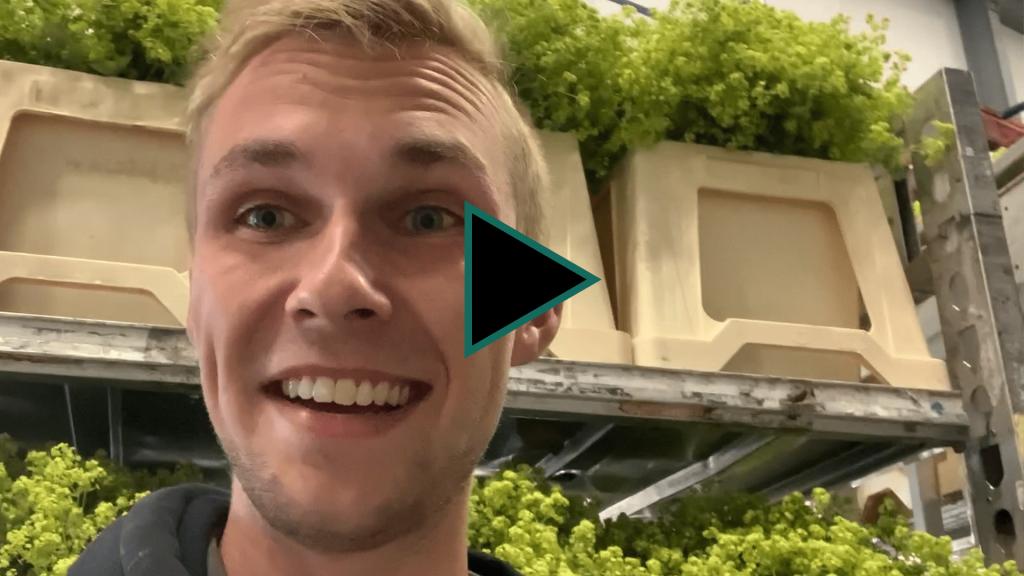 #uitjebloembol-thijs-vlogserie-greenport-duin-en-bollenstreek