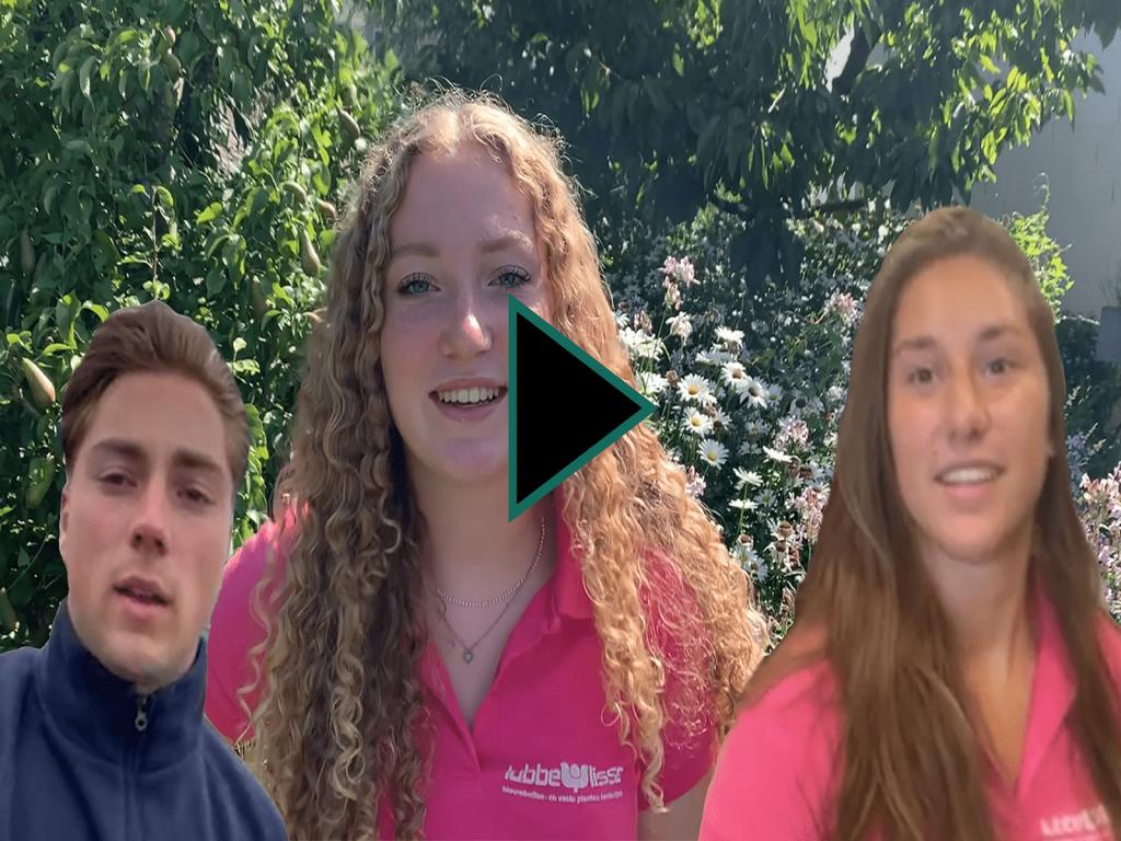 #uitjebloembol-lubbe-vlogserie-greenport-duin-en-bollenstreek