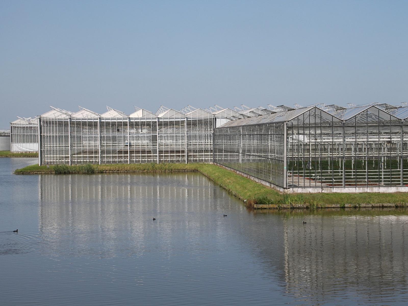Schuurbijeenkomst bedrijfsovername (glas)tuinbouw