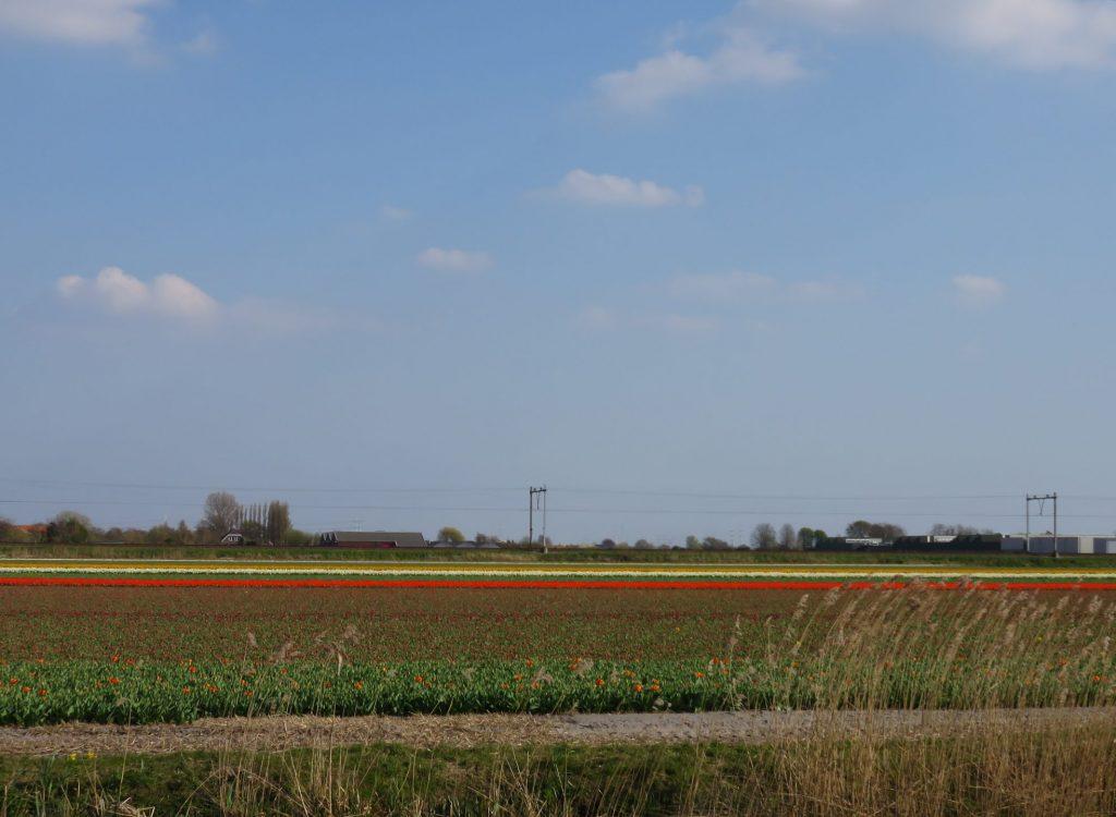 Landschap met trein